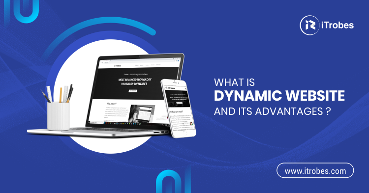 What is dynamic website