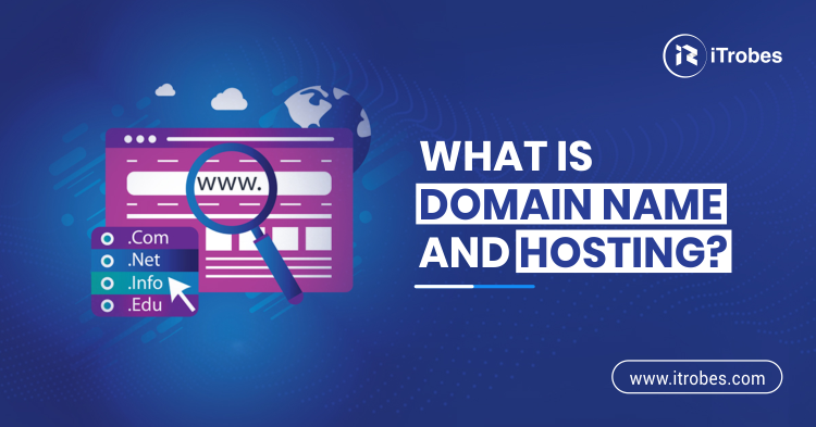 What is domain name and hosting?